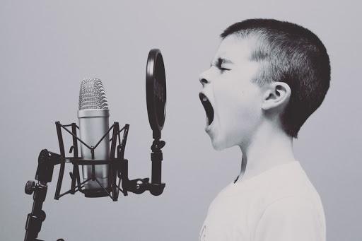 Hoy os hablamos de Voice Search y del cambio de paradigma que supone para la búsqueda por internet